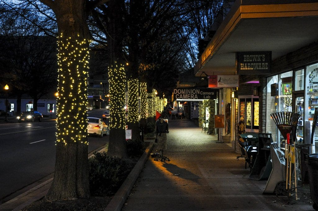 CITY ARBORIST KATHERINE REICH said that after listening to feedback from City residents, the City decided to go with a different manner of decorating City trees with Christmas lights. (Photo: Drew Costley/News-Press)