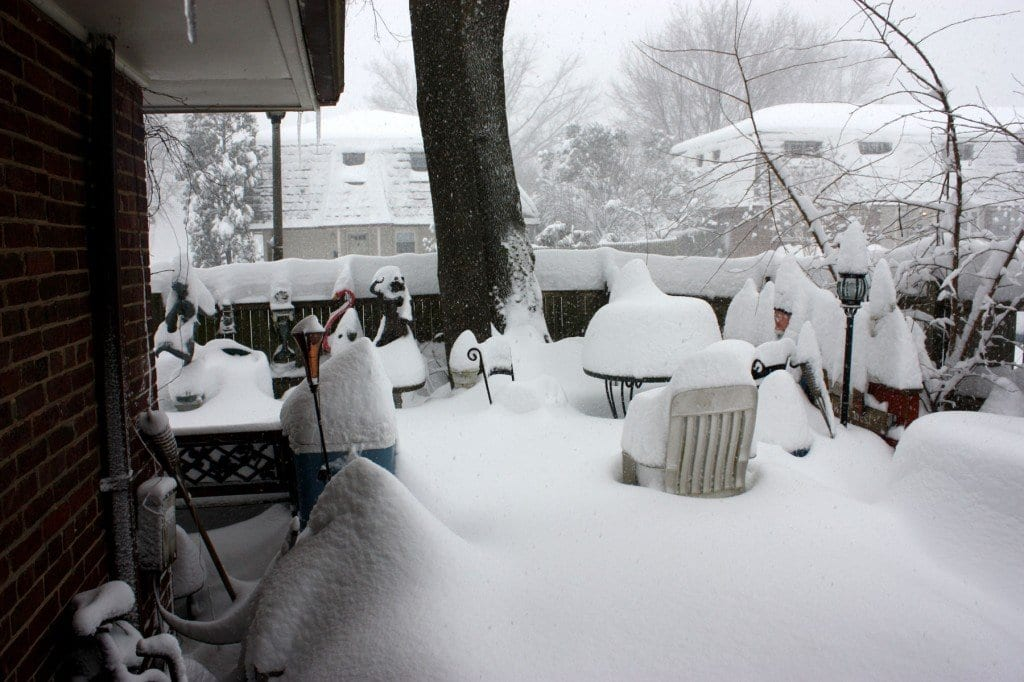 snowjamesct